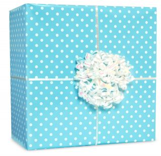 Pastel Blue Small Polka Dot Gift Wrap Kit