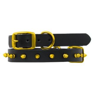 Platinum Pets Black Genuine Leather Dog Collar with Spikes   Gold (11   15)