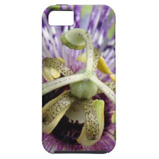 Purple Passion Flower Close Up iPhone 5 Cases
