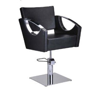 SALON STYLING CHAIR ALL PURPOSE HYDRAULIC EUROPEAN STYLE SALON CHAIR BEAUTY EQUIPMENT   CREATIVITA  Hair Styling Products  Beauty