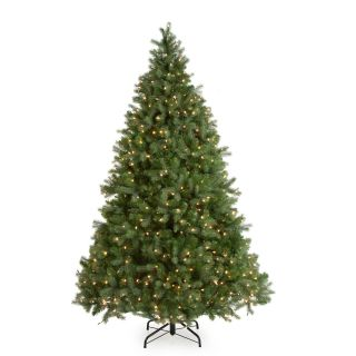 Downswept Douglas Fir Medium Pre lit Christmas Tree   Christmas Trees