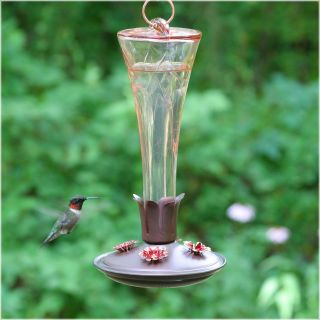 Landmark Hummingbird Feeder   Bird Feeders