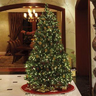 Pre Lit Jersey Frasier Tree with Color Changing Technology   Christmas Trees