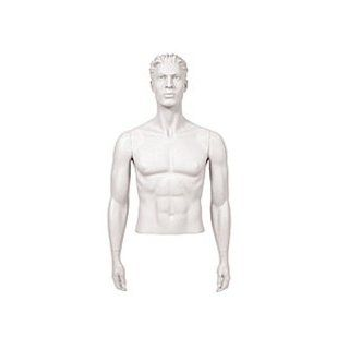 Male Mannequin Arms Arms by Side   White (Arms Only) Science Education