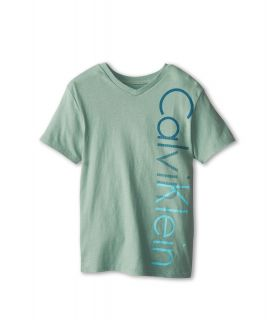 Calvin Klein Kids Iconic V Neck Tee Boys T Shirt (Gray)
