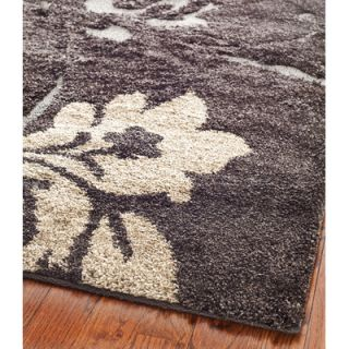 Safavieh Florida Shag Dark Brown Rug