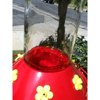 Perky Pet 209B Our Best Glass Hummingbird Feeder with Free Nectar  Wild Bird Feeders  Patio, Lawn & Garden