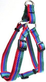 Hamilton Adjustable Easy on Medium Dog Harness with Reflective Threads, 3/4 by 20 to 30 Inch, Green/Blue/Red  Pet Fashion Collars