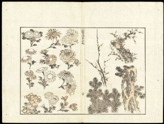 Antique Japanese Prints EHON MANGA FLOWER TREE BOTANY SKETCHES Hokusai 1814   Woodcuts Prints