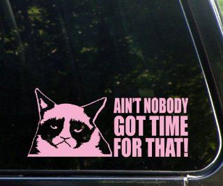 Grumpy Cat   Ain't Nobody Got Time For That   Funny   PINK Die Cut (NOT PRINTED) Decal