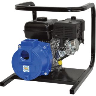 IPT Cast Iron Self-Priming Trash Water Pump — 2in. Ports, 11,000 GPH, 1in. Solids Capacity, 208cc Briggs & Stratton Vanguard Engine, Model# 2TS5ACB  Engine Driven Full Trash Pumps