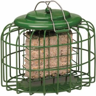 The Nuttery Oval Suet Cake Squirrel Resistant Bird Feeder, Ocean Green