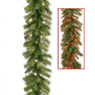 Winter Lane 9' Norwood Fir Garland with Battery Operated Dual Color LED Lights   7299315