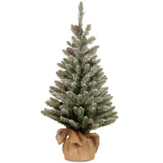 National Tree Co. Snowy Concolor Fir 3 Green Artificial Christmas
